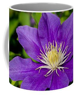 Purple Clematis Flower Coffee Mug