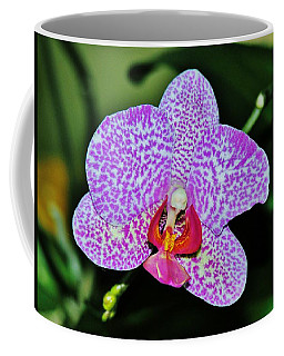 Coffee Mug featuring the photograph Purple Orchid by Sherman Perry