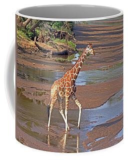 Reticulated Giraffe Coffee Mug