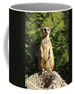 Coffee Mug featuring the photograph Sentinel Meerkat by Carla Parris