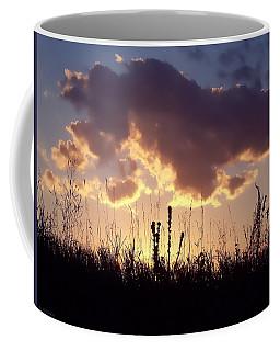 Coffee Mug featuring the photograph Summer Sunset by Lauren Radke