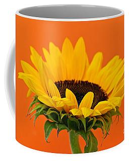 Sunflower Closeup Coffee Mug