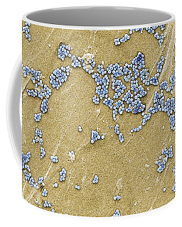 Methicillin-resistant Staphylococcus Coffee Mug
