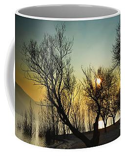 Sunlight Between The Trees Coffee Mug