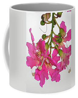 Thorn Tree Flower Coffee Mug