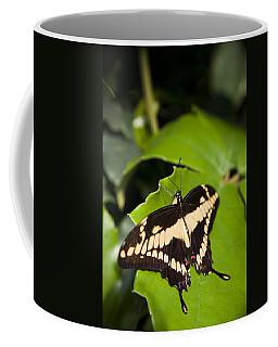 A Butterfly Rests On A Leaf Coffee Mug