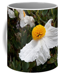 Along Big Sur Coffee Mug