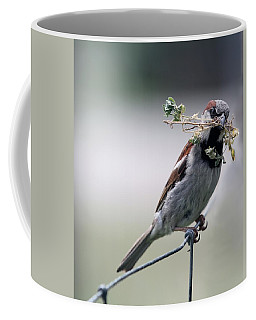 Coffee Mug featuring the photograph A Bird And A Twig by Elizabeth Winter
