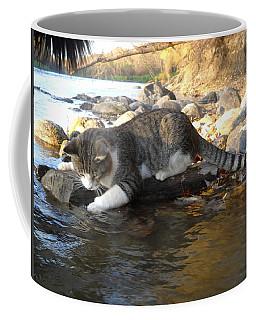 A Cat Goes Fishing Coffee Mug by Kent Lorentzen