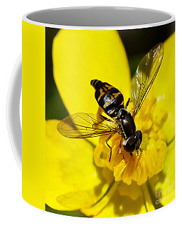 Coffee Mug featuring the photograph A Closer Look by Mitch Shindelbower