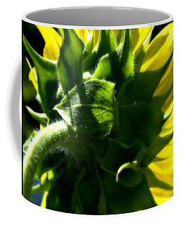 A Face Turned Towards The Sun Coffee Mug by Bruce Carpenter