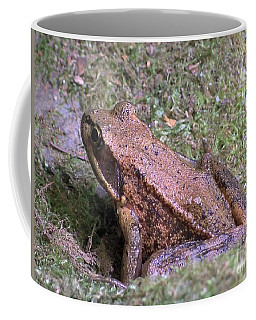 Coffee Mug featuring the photograph A Friendly Frog by Chalet Roome-Rigdon