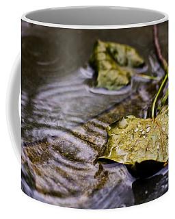 A Leaf In The Rain Coffee Mug