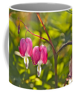 Coffee Mug featuring the photograph A Pair Of Bleeding Hearts by Sean Griffin