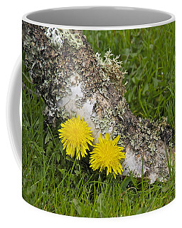 Coffee Mug featuring the photograph A Pair Of Dandies by Sean Griffin