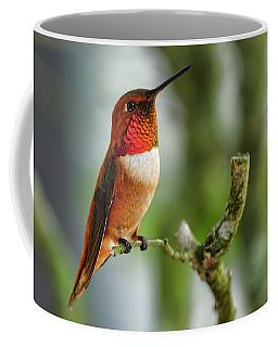 A Rufous Hummingbird Perched Coffee Mug