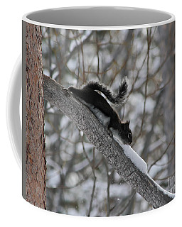 Coffee Mug featuring the photograph A Squirrel Snow Cone by Mitch Shindelbower