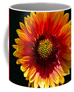 Coffee Mug featuring the photograph A Warm Blanket by Mitch Shindelbower