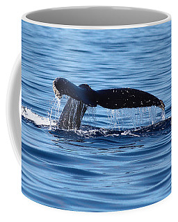 A Whale Of A Time Coffee Mug