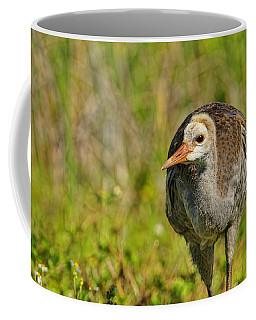 A Young Sandhill Crane Coffee Mug