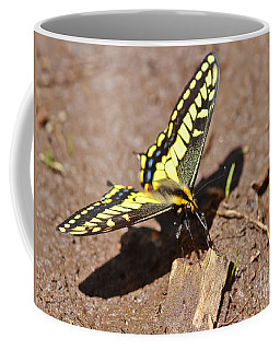 Coffee Mug featuring the photograph Above The Mud by Mitch Shindelbower