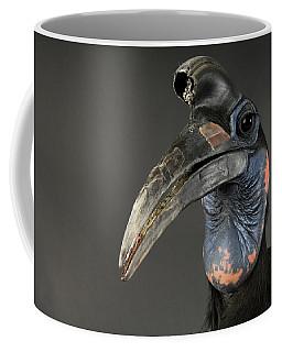 Abyssinian Ground Hornbill Bucorvus Coffee Mug