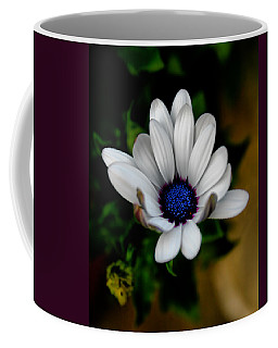 Coffee Mug featuring the photograph African Daisy by Lynne Jenkins