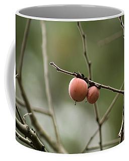 Alabama Wild Persimmons Coffee Mug
