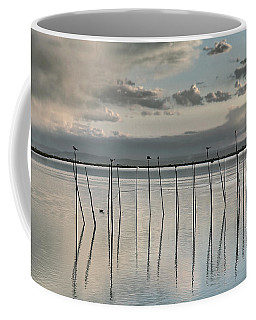 Albufera Gris. Valencia. Spain Coffee Mug