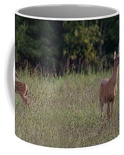 Alert Doe And Fawn Coffee Mug