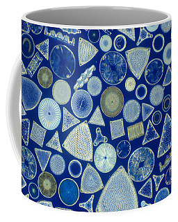 Algae, Fossil Diatoms, Lm Coffee Mug