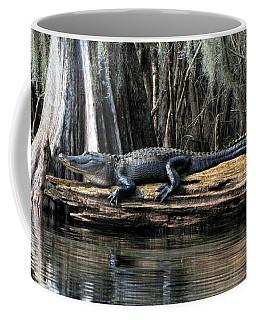 Alligator Sunning Coffee Mug