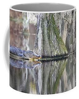 Coffee Mug featuring the photograph Alligator Waiting For Dinner by Dan Friend