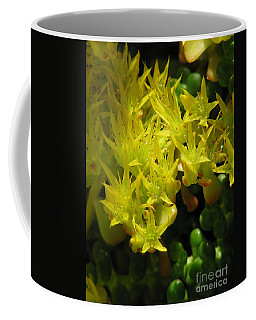 Almost Undersea Coffee Mug by Rory Sagner