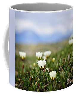 Alpine Meadow In Jasper National Park Coffee Mug