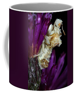 Ambush Bug On Ironweed Coffee Mug