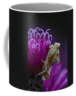 Ambush Bug On Tall Ironweed Coffee Mug