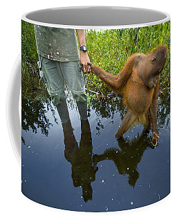 An Orangutan Orphan Clings To The Hand Coffee Mug