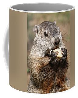 Animal - Woodchuck - Eating Coffee Mug