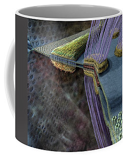 Animal Cell Junctions Coffee Mug