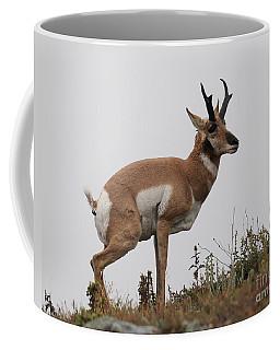 Antelope Critiques Photography Coffee Mug by Art Whitton