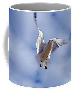 Applying Brakes In Flight Coffee Mug