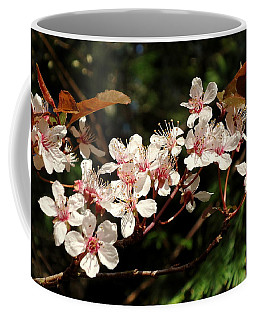 April Plum Blossom Coffee Mug by Peter Mooyman