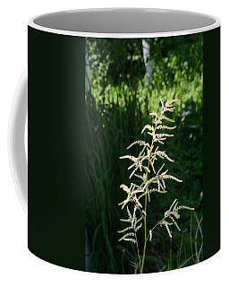 Aruncus Coffee Mug