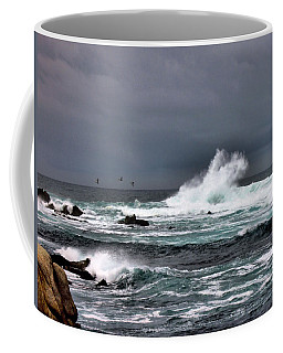 Asilomar 2007 Coffee Mug