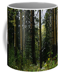 Aspens Banff National Park Coffee Mug