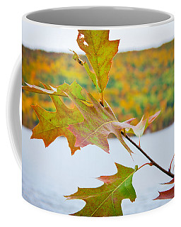 Autumn Bliss Coffee Mug by Sara Frank