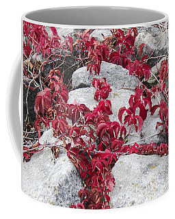 Autumn Color Is Red Coffee Mug