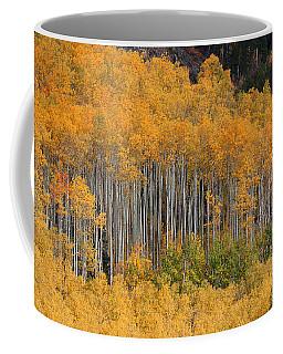 Coffee Mug featuring the photograph Autumn Curtain by Jim Garrison