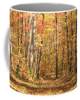 Coffee Mug featuring the photograph Autumn In Minnesota by Penny Meyers